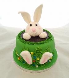 Cake Ref N009