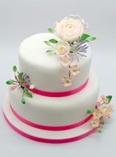Cake Ref W010